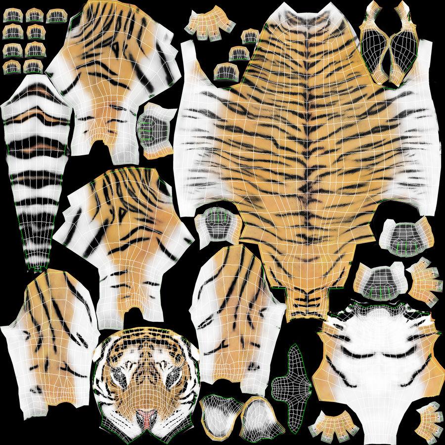 Tigre (pele) royalty-free 3d model - Preview no. 19