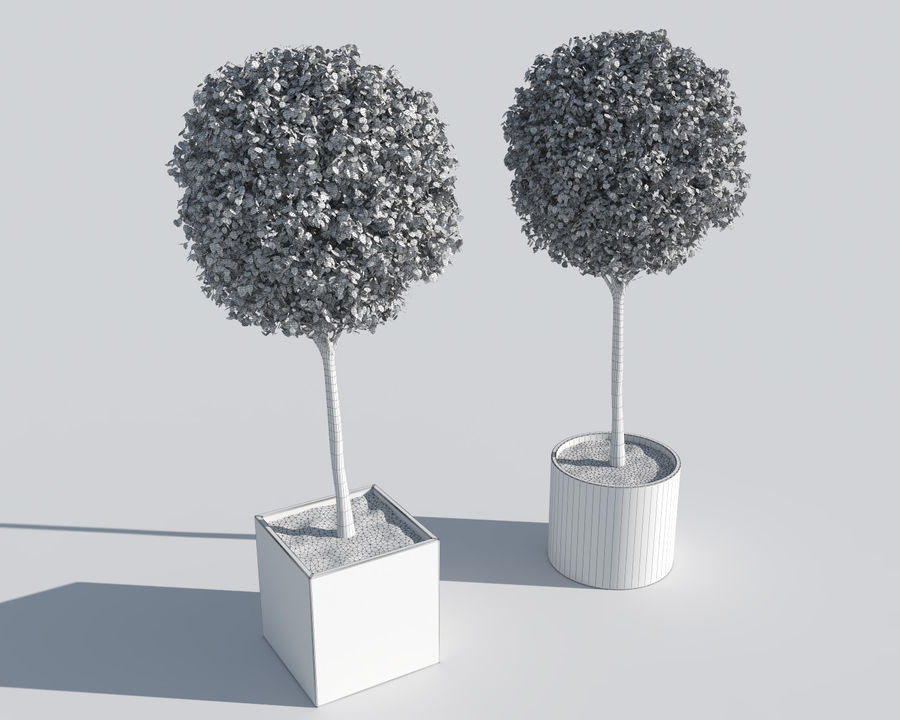 Plantes d'extérieur 2: arbres de buis royalty-free 3d model - Preview no. 6