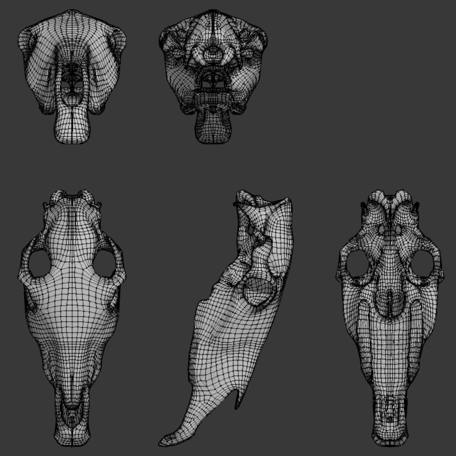 Horse Skull royalty-free 3d model - Preview no. 8