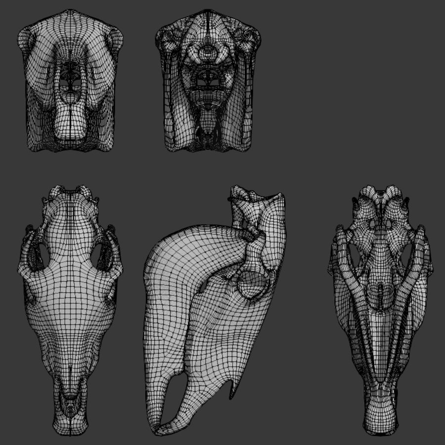 Horse Skull royalty-free 3d model - Preview no. 6
