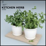 KITCHEN HERB 3d model