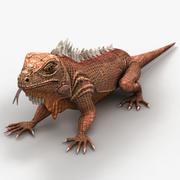 Iguana 3 3d model
