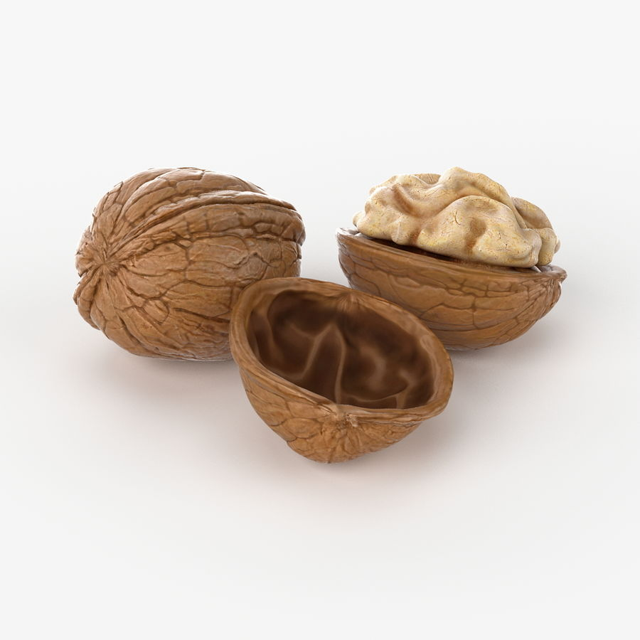 Realistic Walnut royalty-free 3d model - Preview no. 3