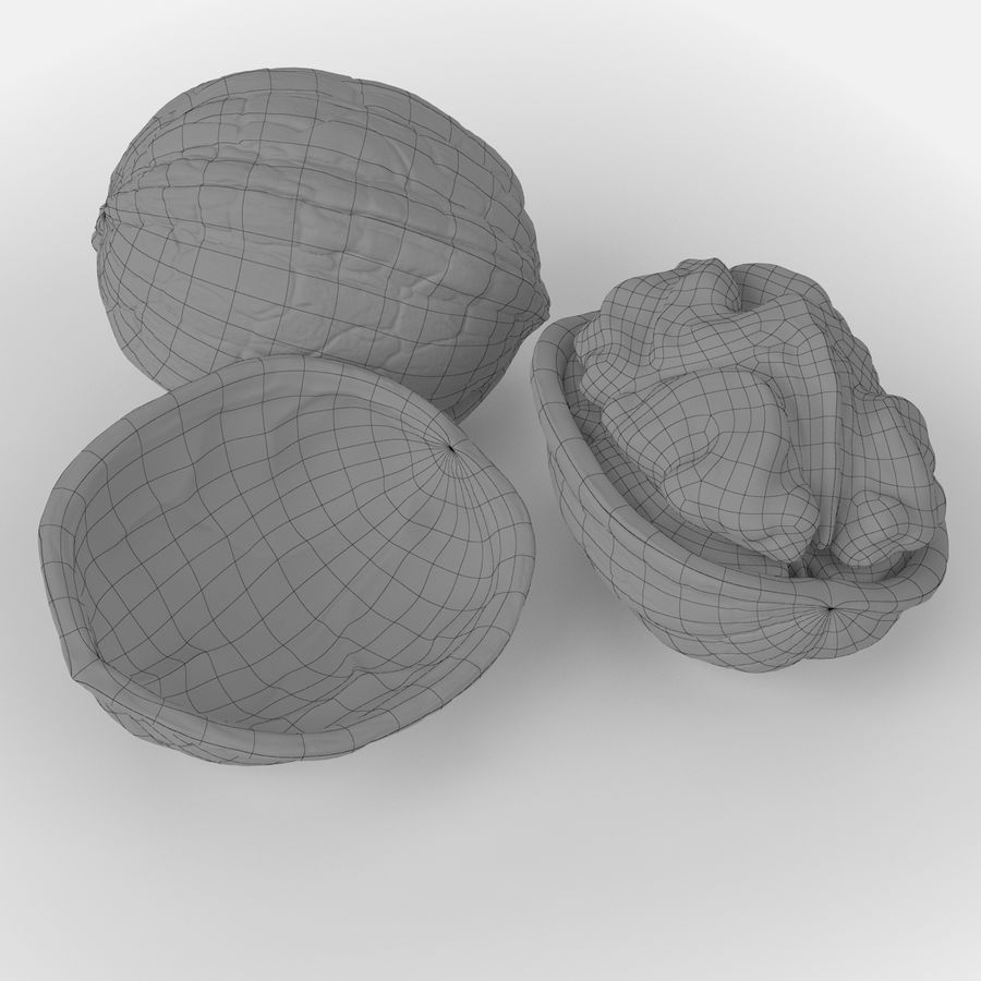 Realistic Walnut royalty-free 3d model - Preview no. 6