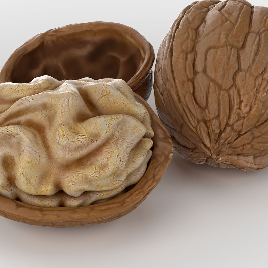 Realistic Walnut royalty-free 3d model - Preview no. 4