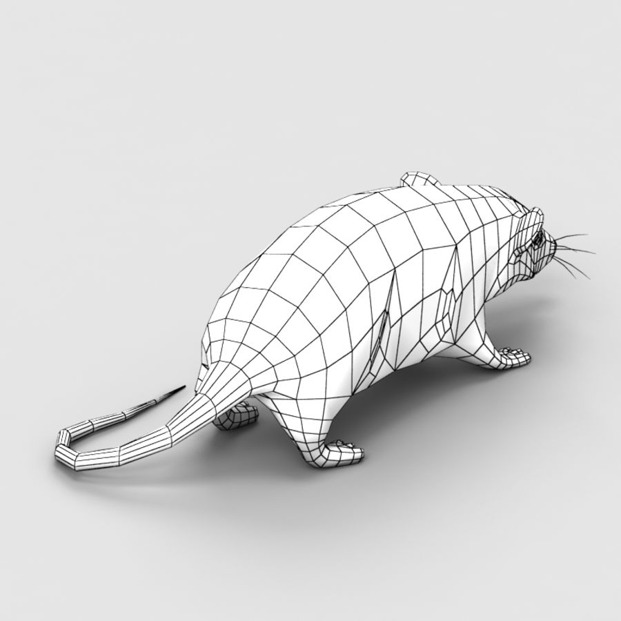 Rat Mouse 2 royalty-free 3d model - Preview no. 7