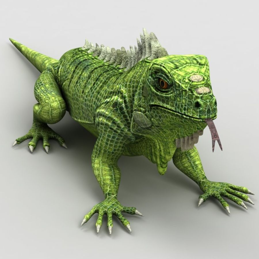 Iguana 2 royalty-free 3d model - Preview no. 2