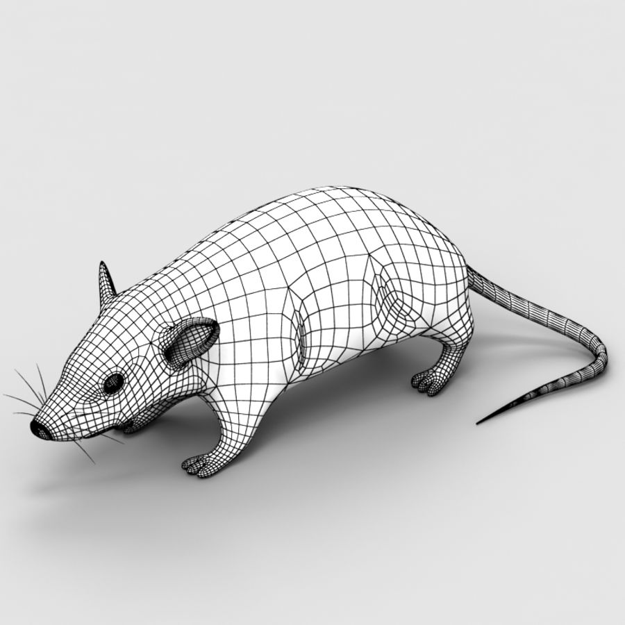 Rat Mouse 3 royalty-free 3d model - Preview no. 8