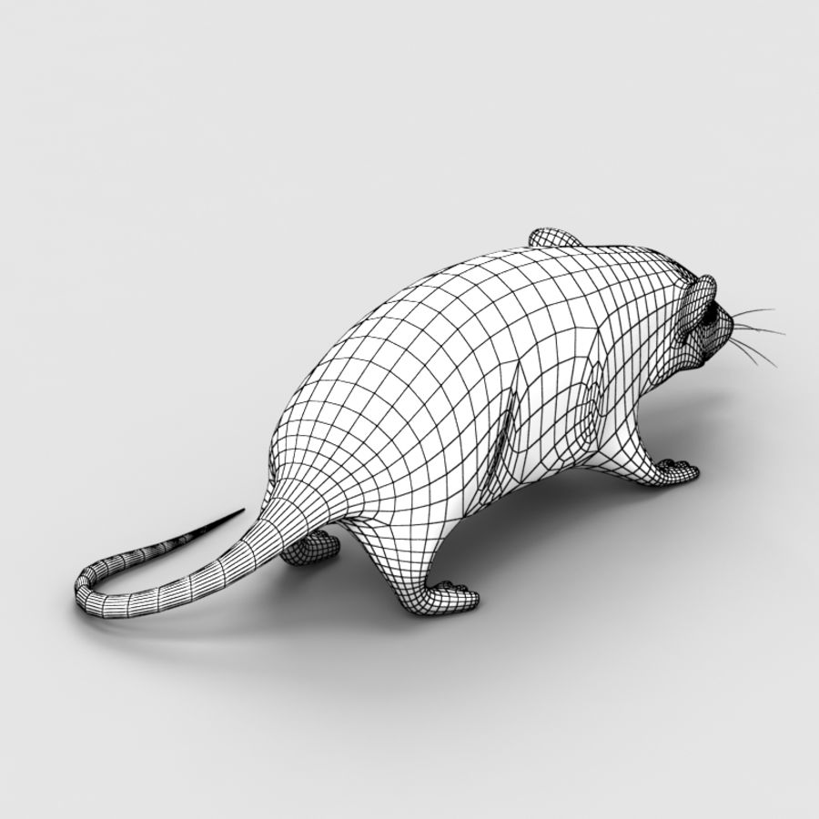 Rat Mouse 3 royalty-free 3d model - Preview no. 9