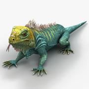 Iguana 6 3d model