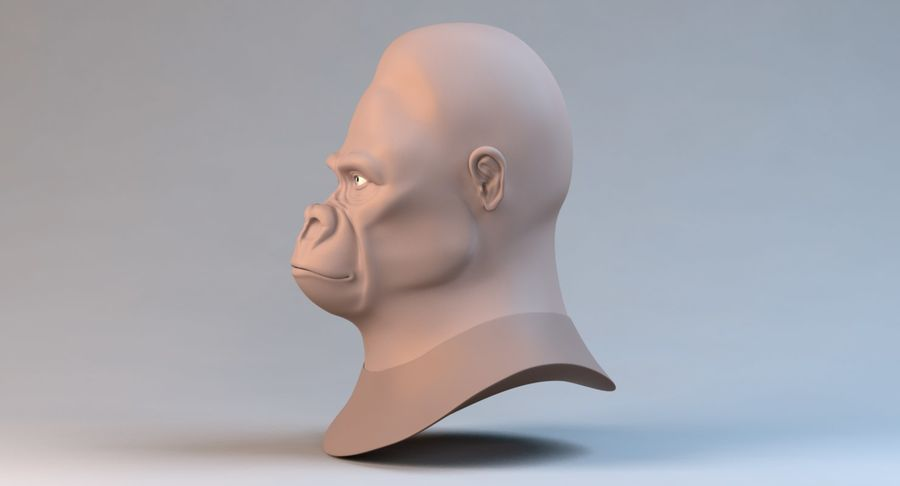 Gorilla royalty-free 3d model - Preview no. 10