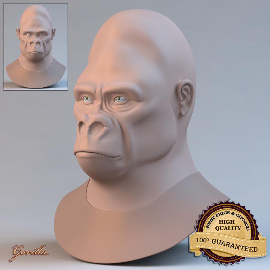 Gorilla royalty-free 3d model - Preview no. 1