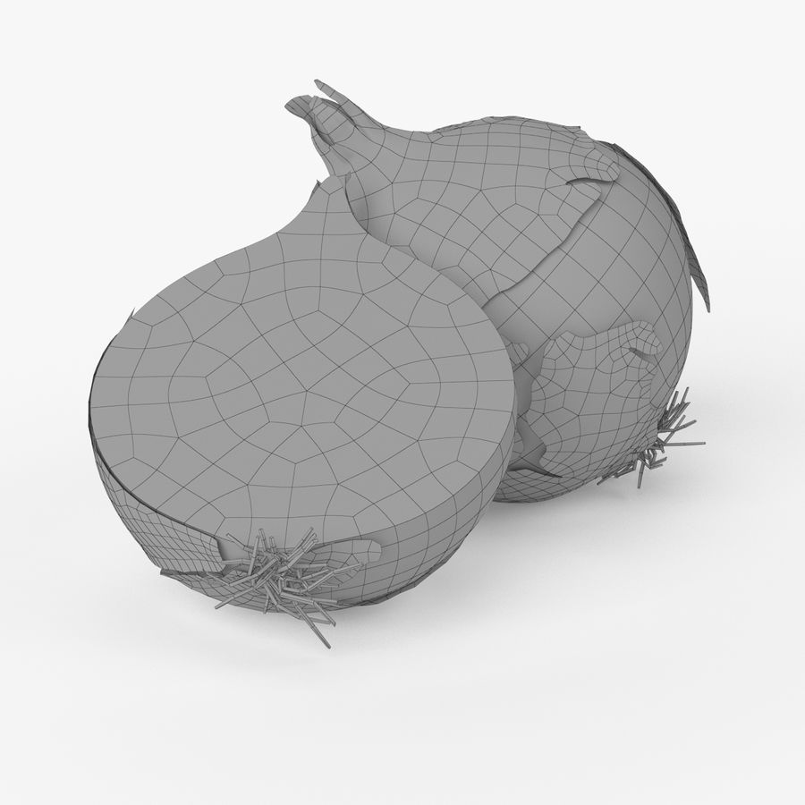 Realistic Onion royalty-free 3d model - Preview no. 7