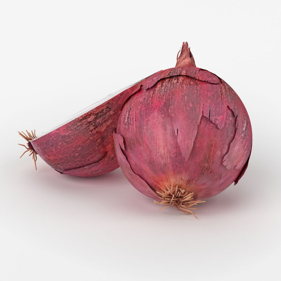 Realistic Onion royalty-free 3d model - Preview no. 3