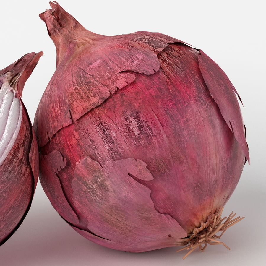 Realistic Onion royalty-free 3d model - Preview no. 6