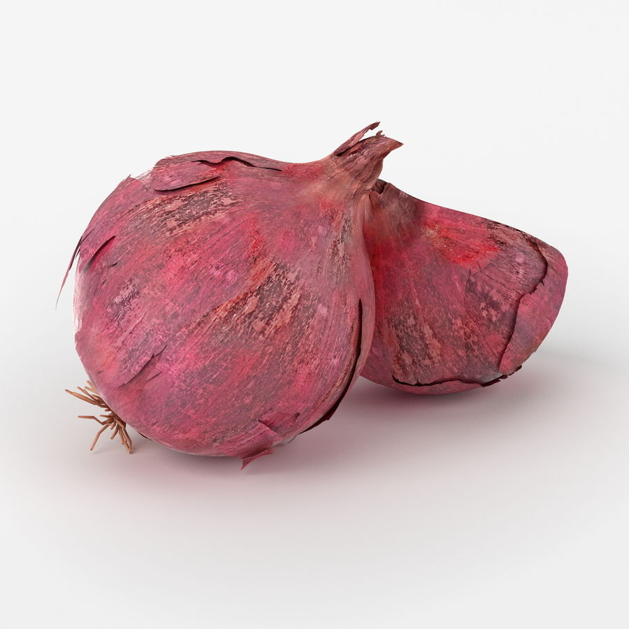 Realistic Onion royalty-free 3d model - Preview no. 4