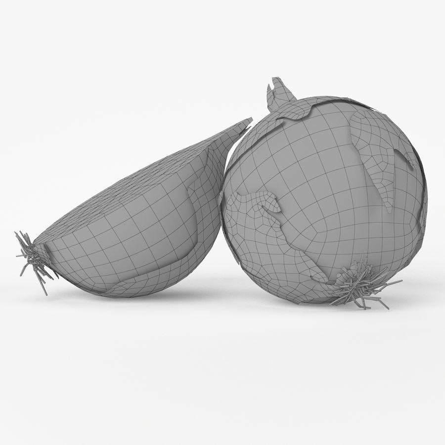 Realistic Onion royalty-free 3d model - Preview no. 2