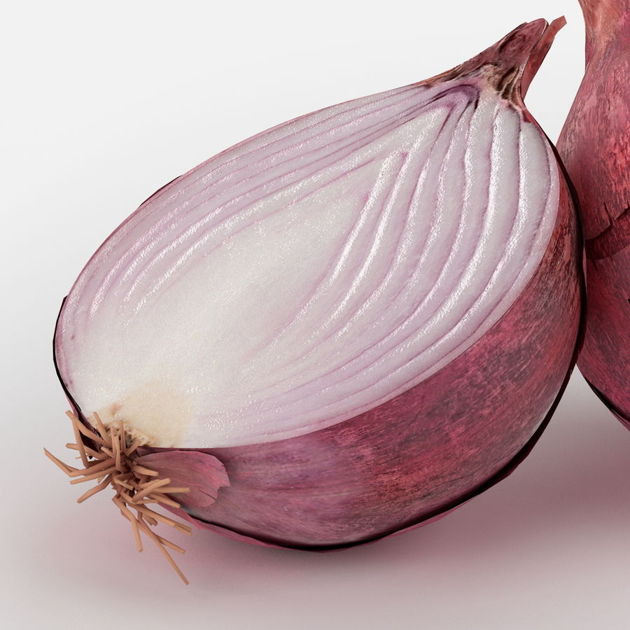 Realistic Onion royalty-free 3d model - Preview no. 5