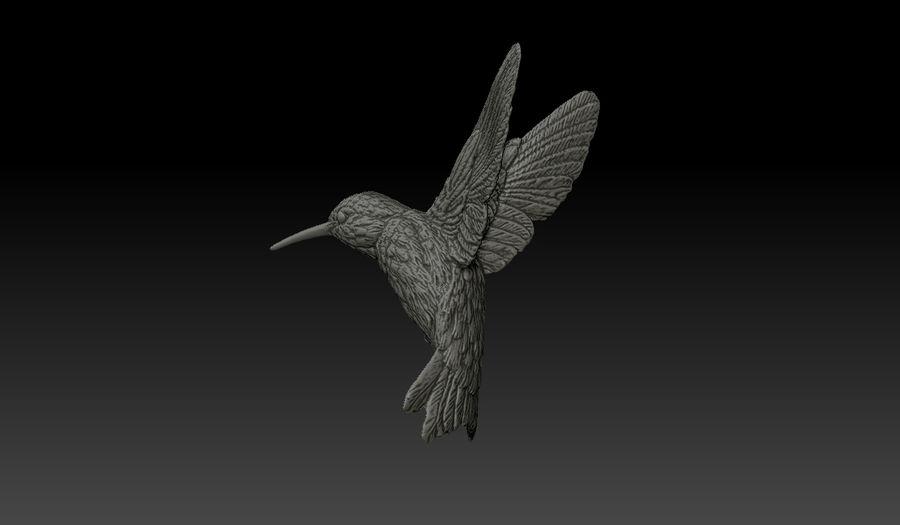 Colibri (Trochilidae) royalty-free 3d model - Preview no. 3