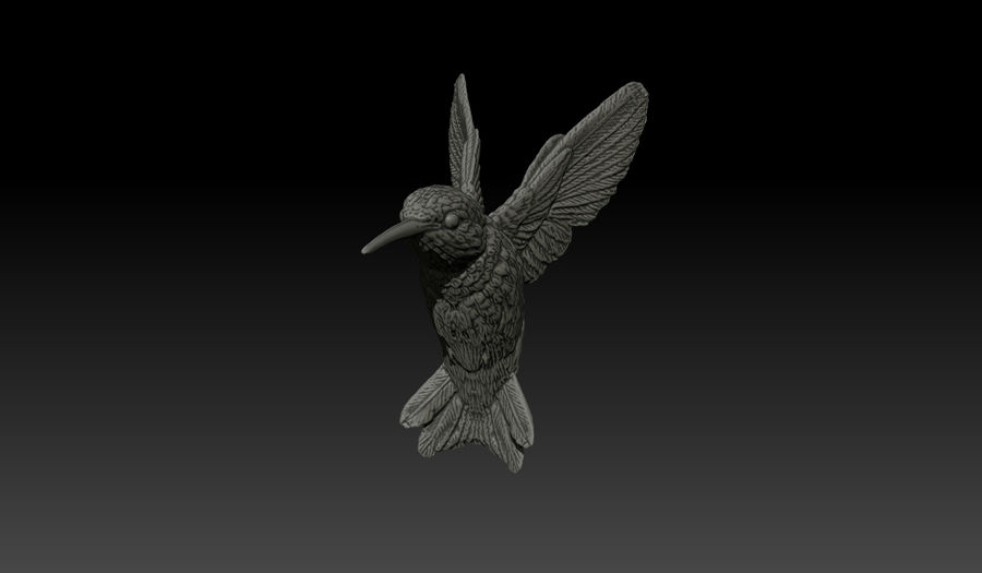 Colibri (Trochilidae) royalty-free 3d model - Preview no. 2