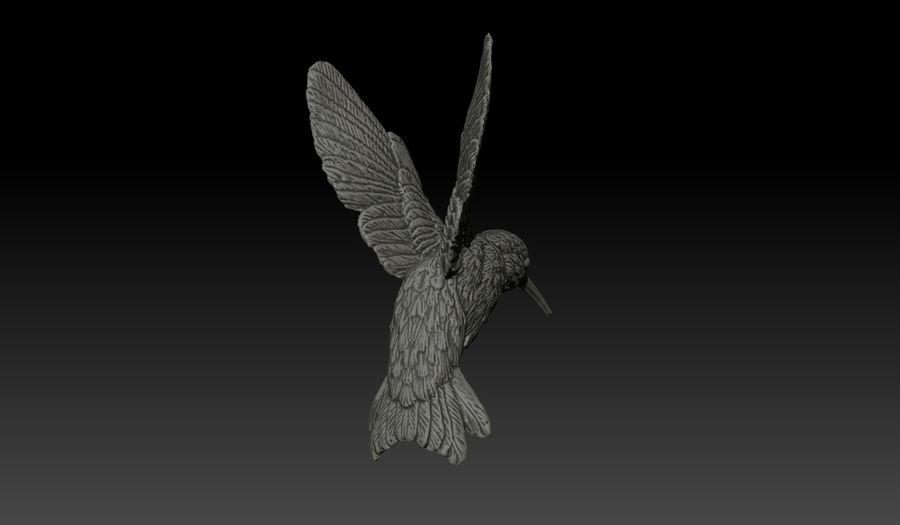 Colibri (Trochilidae) royalty-free 3d model - Preview no. 5