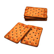 Salt Biscuit 03 3d model