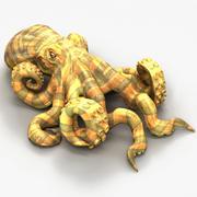 Octopus4 3d model
