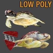 Pacote de tartarugas marinhas 3d model