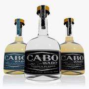 Cabo Wabo Tequila Set 3d model