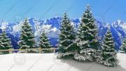 Pine Tree Forest - Winter 3d model