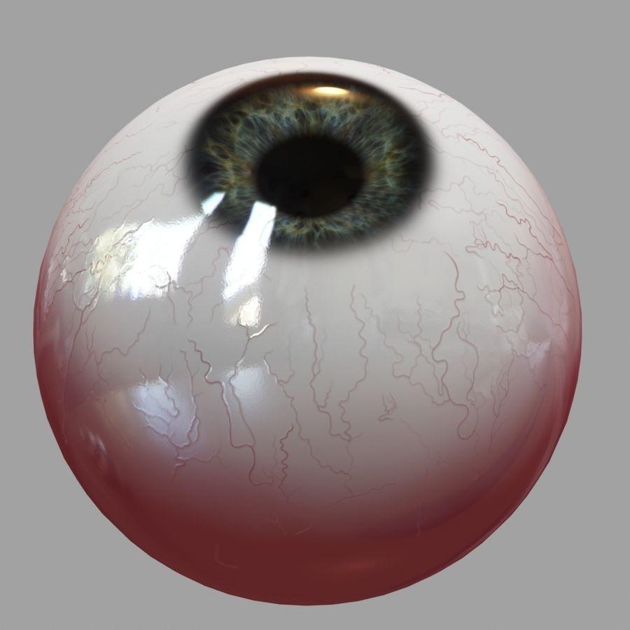 Human Eyeball royalty-free 3d model - Preview no. 14