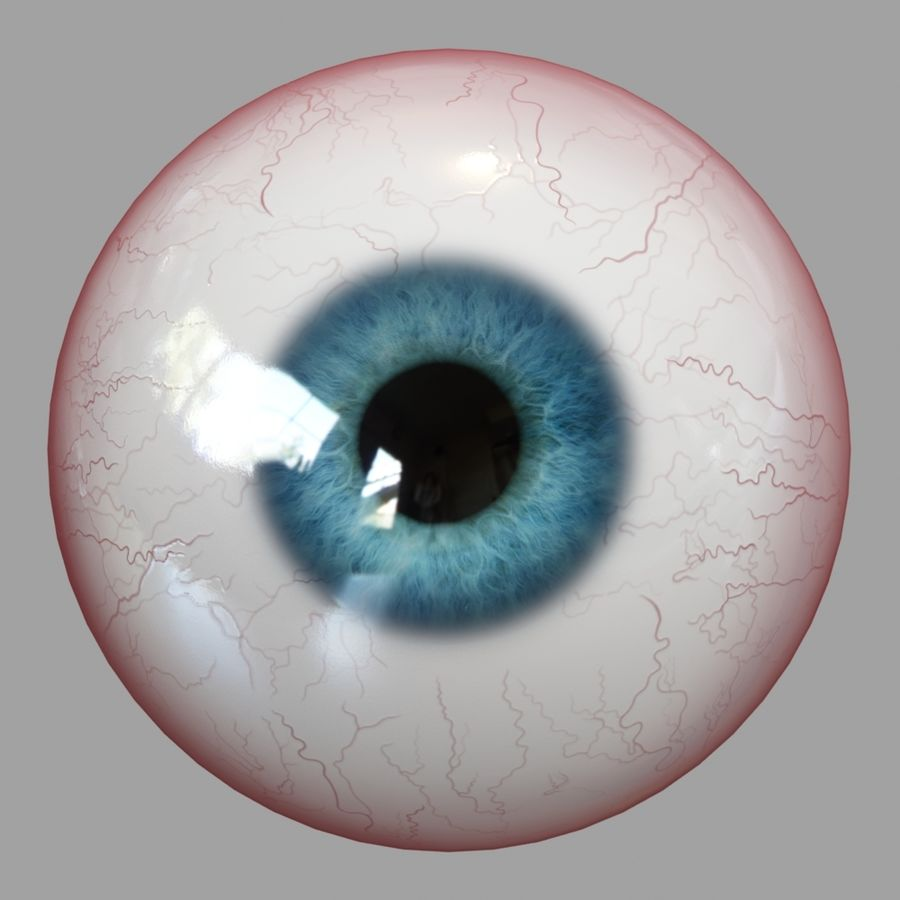 Human Eyeball royalty-free 3d model - Preview no. 1