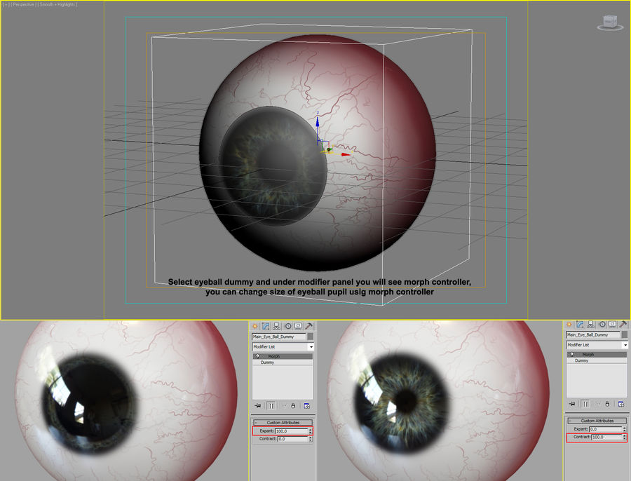 Human Eyeball royalty-free 3d model - Preview no. 15