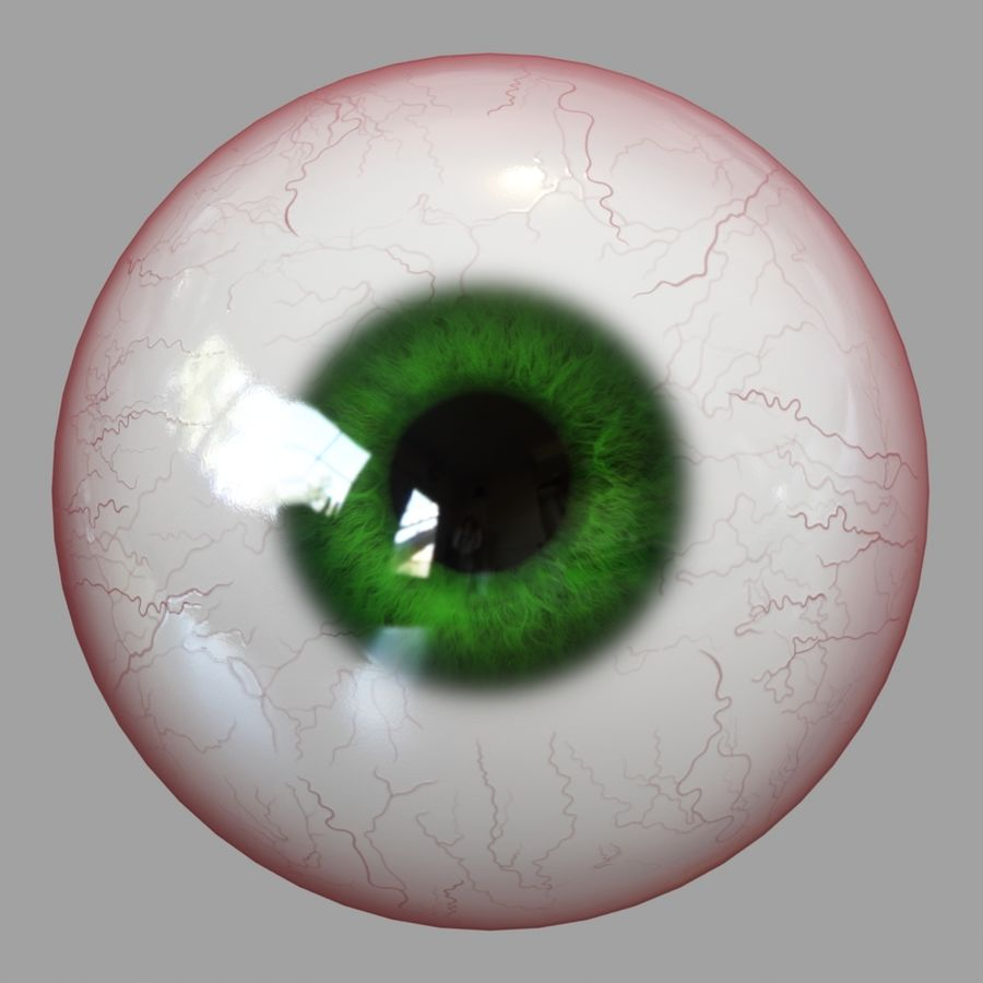 Human Eyeball royalty-free 3d model - Preview no. 6