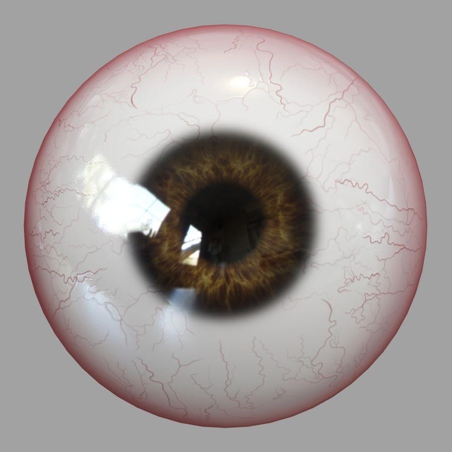 Human Eyeball royalty-free 3d model - Preview no. 11