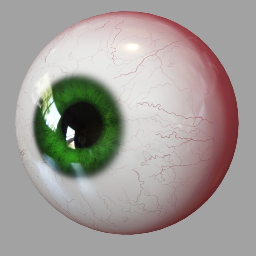 Human Eyeball royalty-free 3d model - Preview no. 5