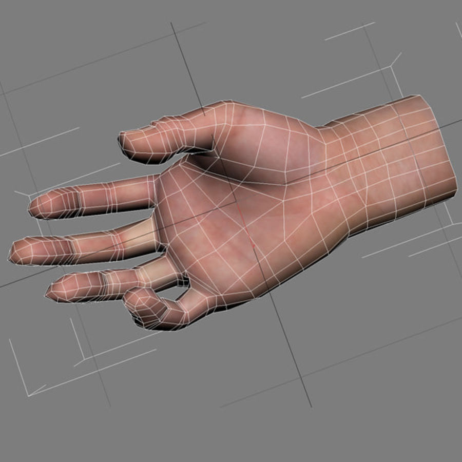Hand opgetuigd royalty-free 3d model - Preview no. 13