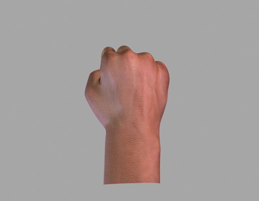 Hand opgetuigd royalty-free 3d model - Preview no. 3