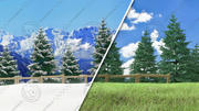 Pine Tree Forest - Summer & Winter 3d model