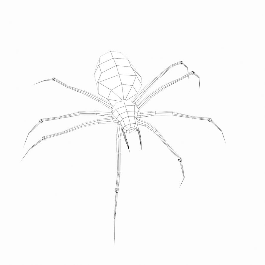 Spider royalty-free 3d model - Preview no. 8