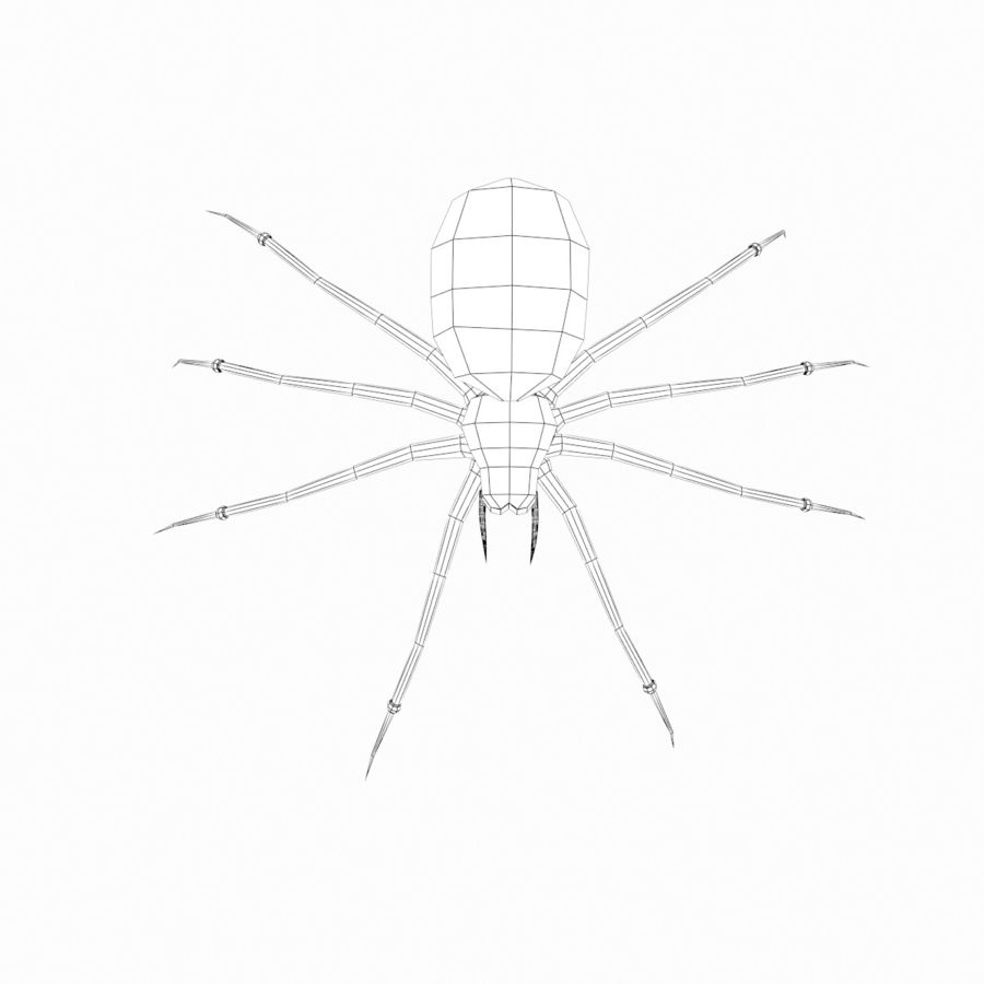 Spider royalty-free 3d model - Preview no. 10
