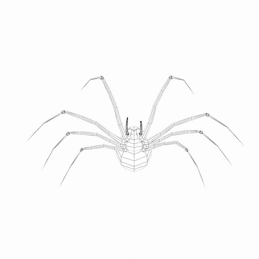 거미 royalty-free 3d model - Preview no. 4