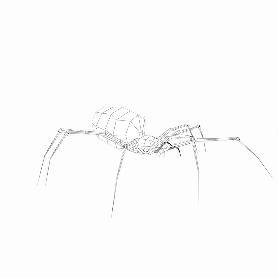 Spider royalty-free 3d model - Preview no. 9
