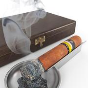 Cigars 3d model