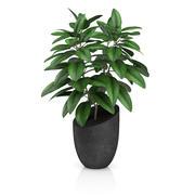 Plante en pot noir 3d model