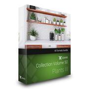 CGAxis Models Volume 50 Plants III 3d model