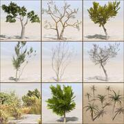 Tree Plant Pack 3d model