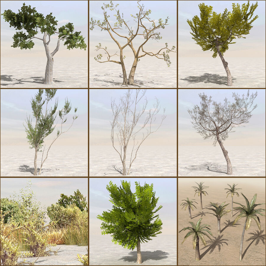 Tree Plant Pack royalty-free 3d model - Preview no. 1