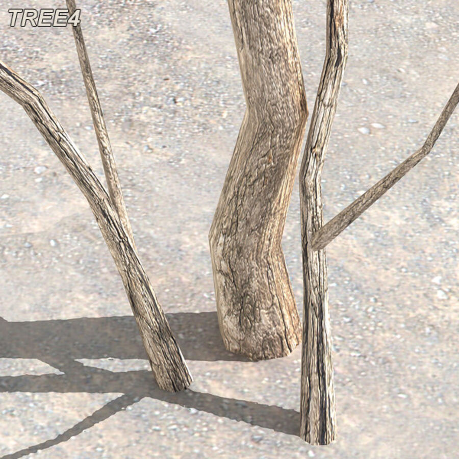 Tree Plant Pack royalty-free 3d model - Preview no. 54