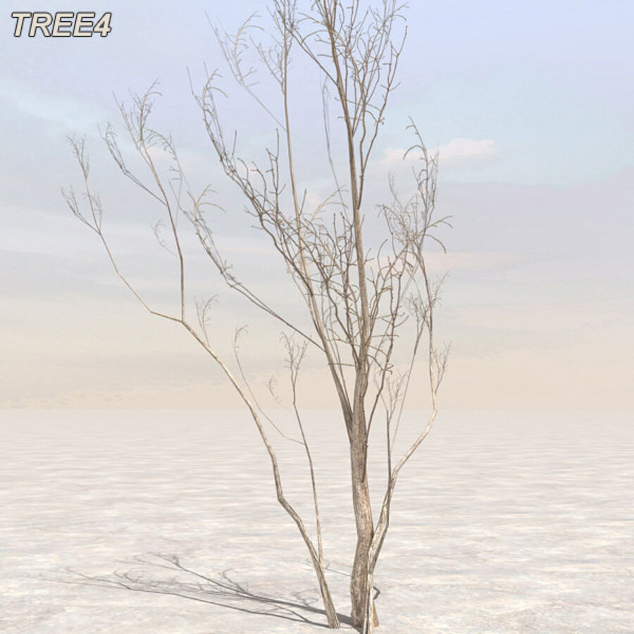 Tree Plant Pack royalty-free 3d model - Preview no. 48